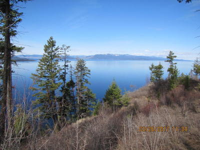 Lake County Residential Lots & Land For Sale: Mt Hwy 35 South