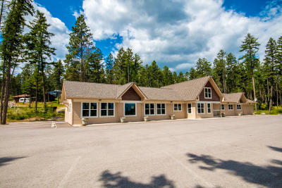 Somers Commercial For Sale: 77 Deer Creek Road
