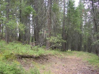 Kalispell MT Residential Lots & Land For Sale: $99,000