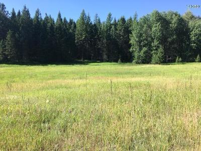 Lakeside Residential Lots & Land For Sale: 1170 Bierney Creek Road