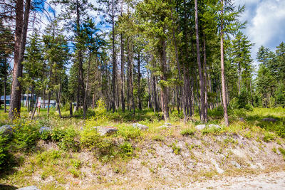 Somers Residential Lots & Land For Sale: 99 Deer Creek Road