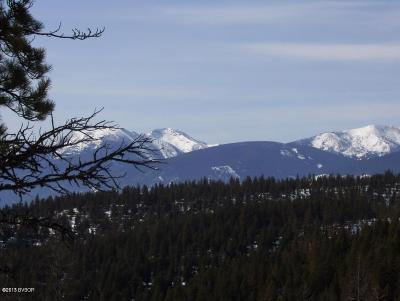 Missoula County Residential Lots & Land For Sale: Lot 91 Upper Woodchuck