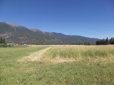 Kalispell Residential Lots & Land For Sale: 562 Weaver Farm Road