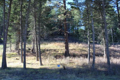 Bigfork Residential Lots & Land For Sale: 348 Windsor Court