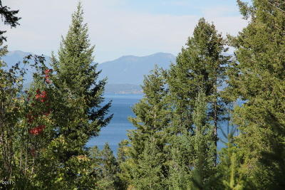 Lake County Residential Lots & Land For Sale: Nhn Hwy 93 South