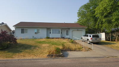 Lake County Single Family Home For Sale: 501 21st Street West