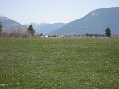 Kalispell Residential Lots & Land For Sale: 184 Tetrault Road