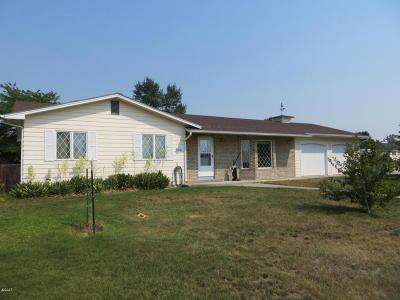 Stevensville Single Family Home For Sale: 904 College Street