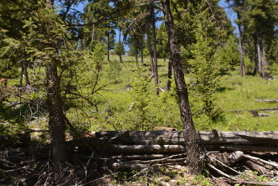 Kila Residential Lots & Land For Sale: Nhn Coon Hollow Road