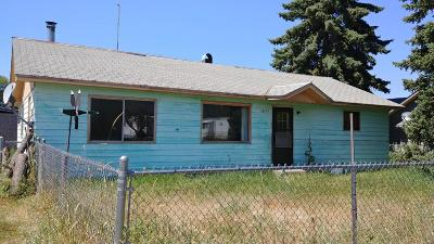 Lake County Single Family Home For Sale: 42493 4th Avenue East