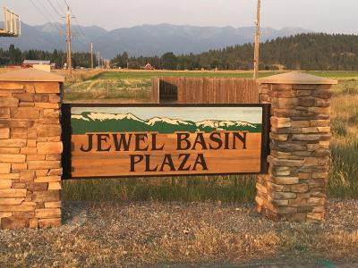 Bigfork Residential Lots & Land For Sale: 155 Jewel Basin Court