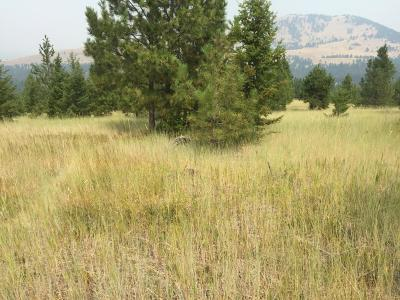 Missoula County Residential Lots & Land For Sale: Burning Tree Drive