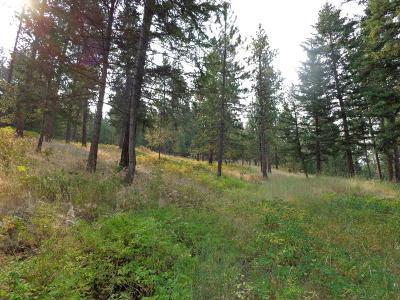 Lake County Residential Lots & Land For Sale: Lot 33 Lost Quartz Road