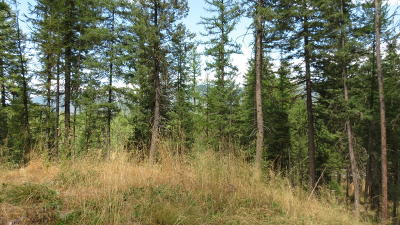 Kalispell Residential Lots & Land For Sale: 125 Horseshoe Drive