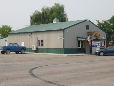 Lake County Commercial For Sale: Mt Highway 212