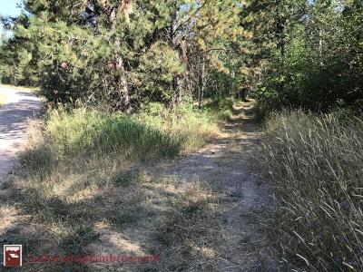 Missoula County Residential Lots & Land For Sale: Lot 1 Beargrass Mountain