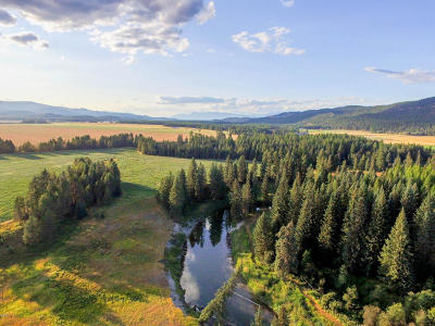 Whitefish Farm & Ranch For Sale: 275 Lodgepole Road