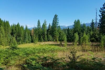 Bigfork Residential Lots & Land For Sale: 1557 Bug Creek Road