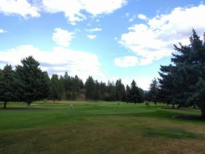 Bigfork Residential Lots & Land For Sale: 135 Golf Terrace