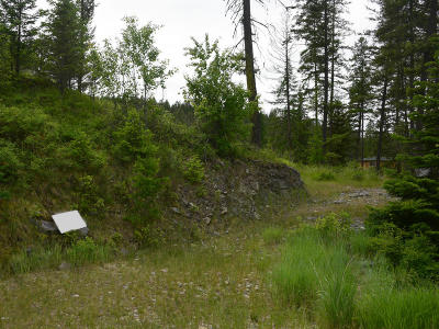 Flathead County Residential Lots & Land For Sale: 178 Bear Hollow Drive