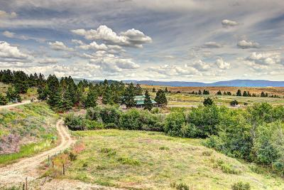 Missoula County Residential Lots & Land For Sale: Tr 1a Red Quill Ranch