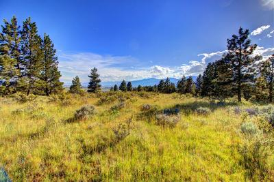 Missoula County Residential Lots & Land For Sale: Tr. 7aa Red Quill Ranch