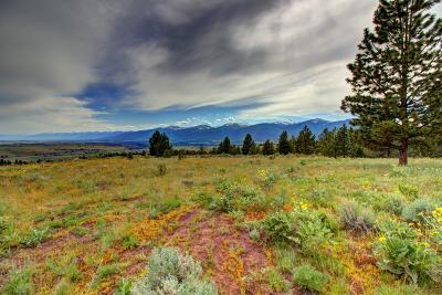 Missoula County Residential Lots & Land For Sale: Tr 9 Red Quill Ranch