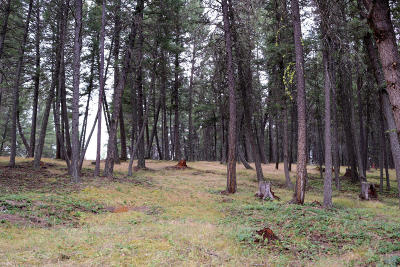 Lincoln County Residential Lots & Land For Sale: Nhn Forest Loop Road