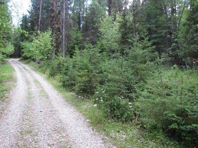 Kalispell Residential Lots & Land For Sale: 1621 McMannamy Draw