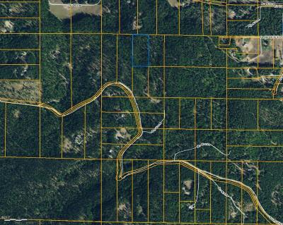 Bigfork Residential Lots & Land For Sale: 939 Swan Hill Drive