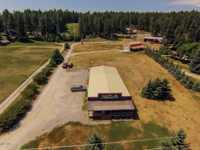 Flathead County Commercial For Sale: 5064 Whitefish Stage