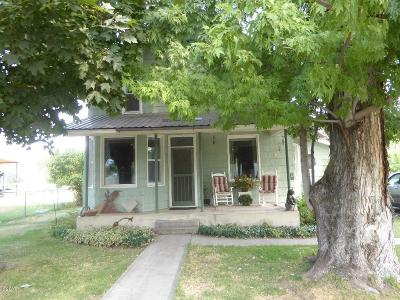 Plains Single Family Home For Sale: 118 McGowan Street