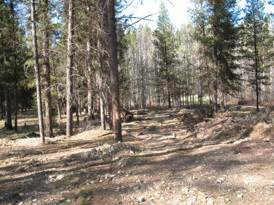 Lincoln County Residential Lots & Land For Sale: 63 River View Drive
