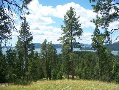 Lake County Residential Lots & Land For Sale: Nhn Wild Horse Ranch Lane