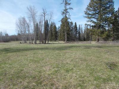 Lake County Residential Lots & Land For Sale: Nhn Hwy 35
