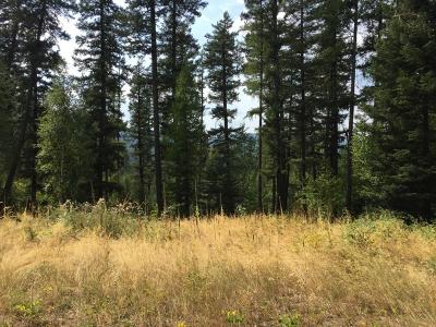 Bigfork Residential Lots & Land For Sale: Lot 9 Wapiti Pines