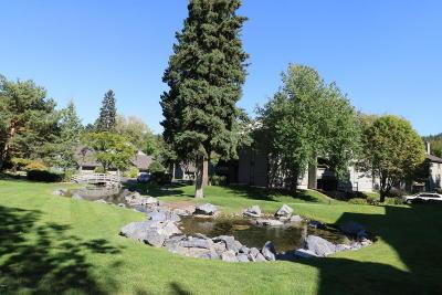 Bigfork Single Family Home For Sale: 270 Bridge Street