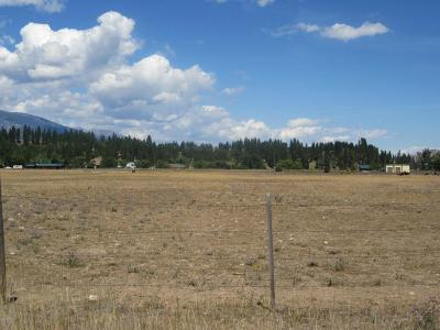 Ravalli County Residential Lots & Land For Sale: 112 Welcome Way South