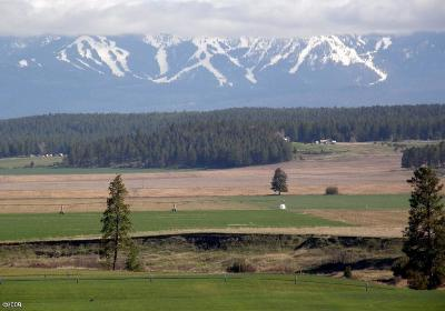 Flathead County Residential Lots & Land For Sale: 382 Harvest View Lane