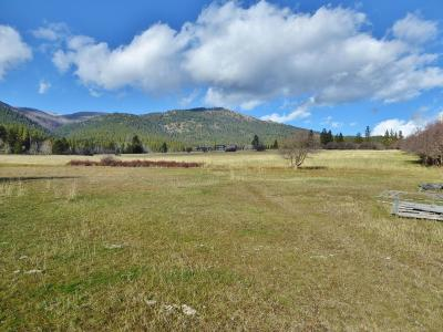 Ravalli County Residential Lots & Land For Sale: Tract C Smith Creek Lane