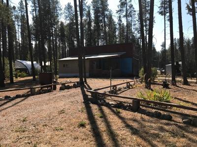 Flathead County Residential Lots & Land For Sale: 257 Bear Street