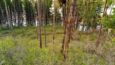 Missoula County Residential Lots & Land For Sale: Nhn South Side Road