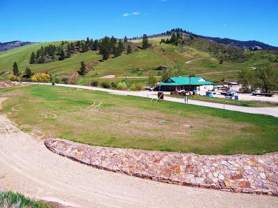 Plains MT Residential Lots & Land For Sale: $199,000