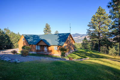 Missoula Single Family Home For Sale: 5064 Skyway Drive