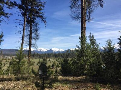 Seeley Lake Residential Lots & Land For Sale: 594 Daisy Lane