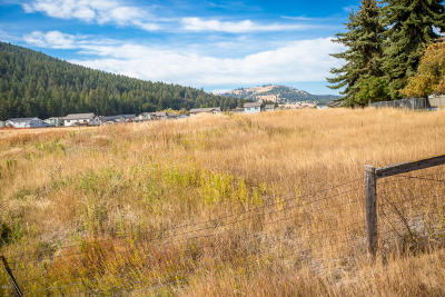 Flathead County Residential Lots & Land For Sale: Nhn Valley View Drive