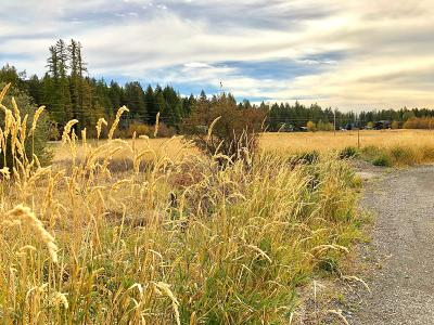 Whitefish Residential Lots & Land For Sale: 337 Cougar Trail