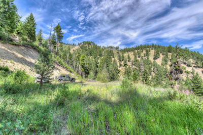 Residential Lots & Land For Sale: Nhn Leaning Pine Trail