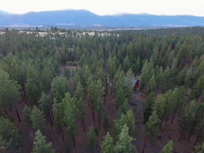 Ravalli County Residential Lots & Land For Sale: 510 Treece Gulch Road