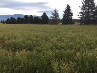 Whitefish MT Residential Lots & Land For Sale: $1,395,000